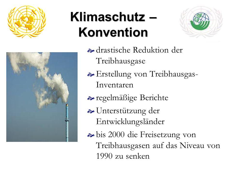 Klimaschutz – Konvention drastische Reduktion der Treibhausgase Erstellung von Treibhausgas- Inventaren regelmäßige Berichte Unterstützung der Entwick