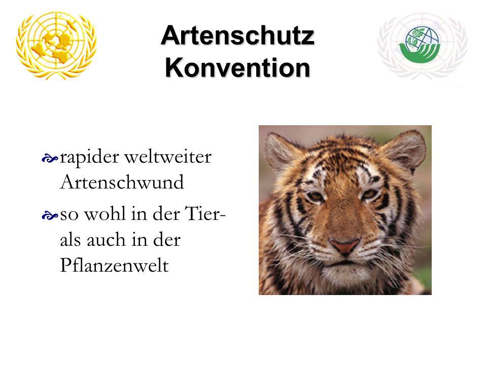 Artenschutz Konvention rapider weltweiter Artenschwund so wohl in der Tier- als auch in der Pflanzenwelt