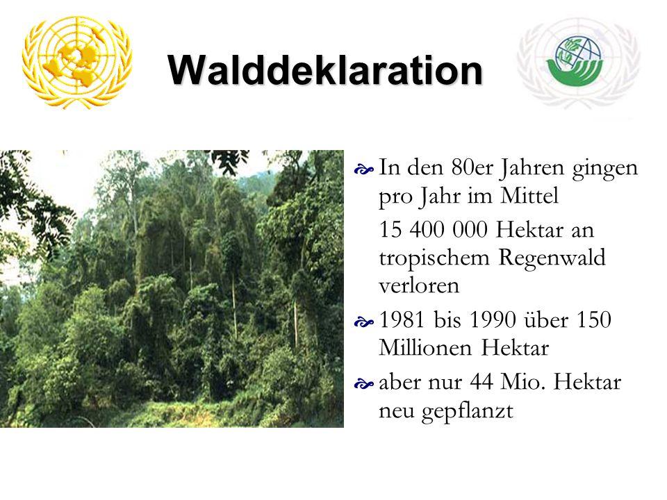 Walddeklaration In den 80er Jahren gingen pro Jahr im Mittel 15 400 000 Hektar an tropischem Regenwald verloren 1981 bis 1990 über 150 Millionen Hekta