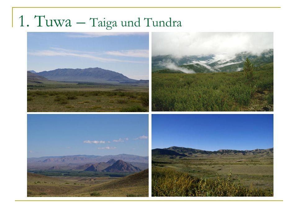 1. Tuwa – Nomaden und Tiere