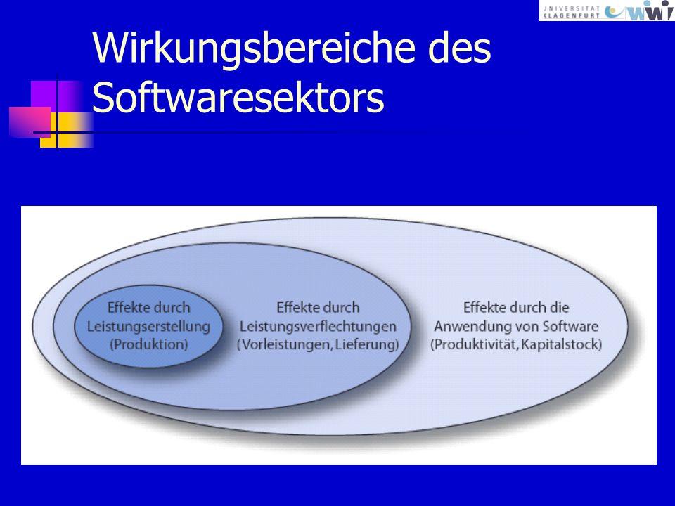 Wirkungsbereiche des Softwaresektors