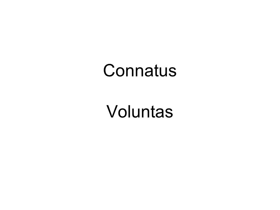 Connatus Voluntas