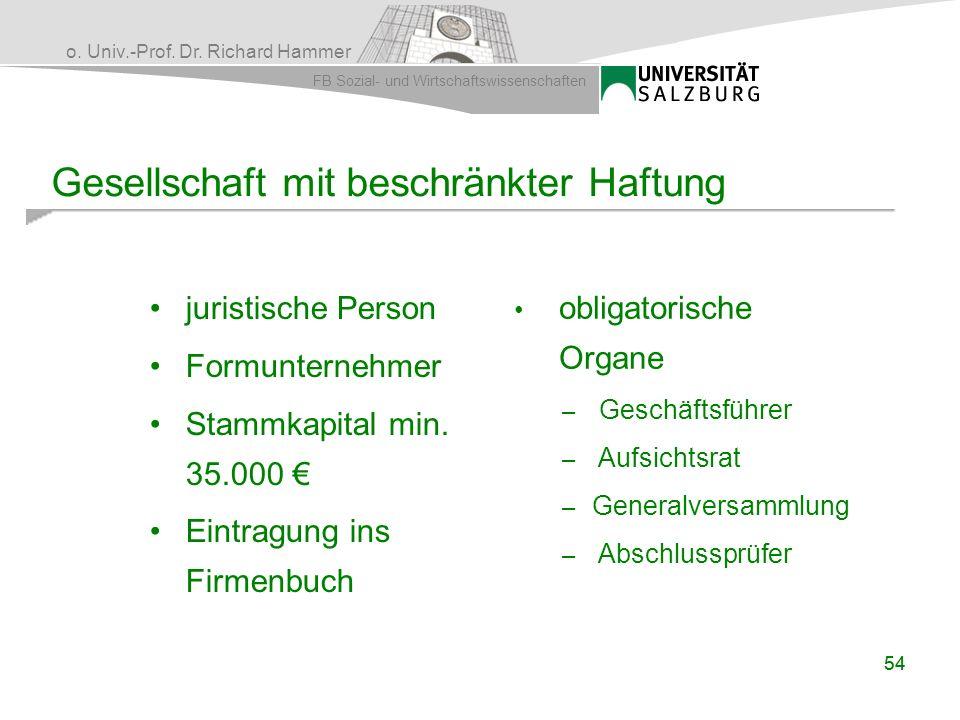 o. Univ.-Prof. Dr. Richard Hammer FB Sozial- und Wirtschaftswissenschaften 54 Gesellschaft mit beschränkter Haftung juristische Person Formunternehmer