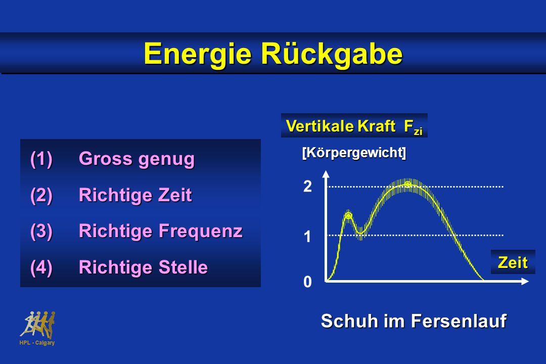 (1)Gross genug (2)Richtige Zeit (3)Richtige Frequenz (4)Richtige Stelle Energie Rückgabe Vertikale Kraft F zi Zeit 2 1 0 Schuh im Fersenlauf [Körperge