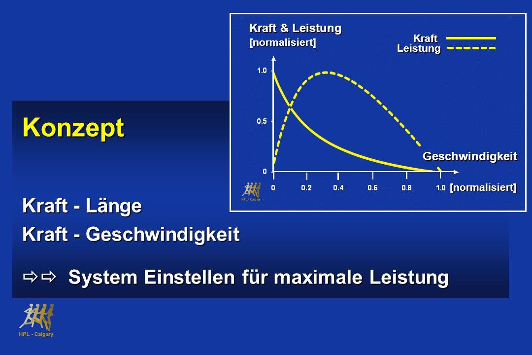 Konzept Kraft - Länge Kraft - Geschwindigkeit System Einstellen für maximale Leistung System Einstellen für maximale Leistung Kraft & Leistung [normal