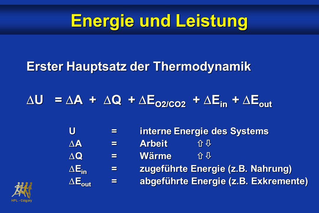 Erster Hauptsatz der Thermodynamik U= A + Q + E O2/CO2 + E in + E out U= A + Q + E O2/CO2 + E in + E out U=interne Energie des Systems A =Arbeit A =Ar