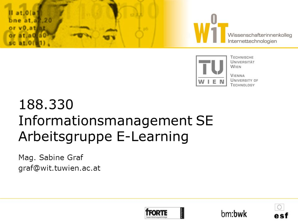 188.330 Informationsmanagement SE Arbeitsgruppe E-Learning Mag. Sabine Graf graf@wit.tuwien.ac.at