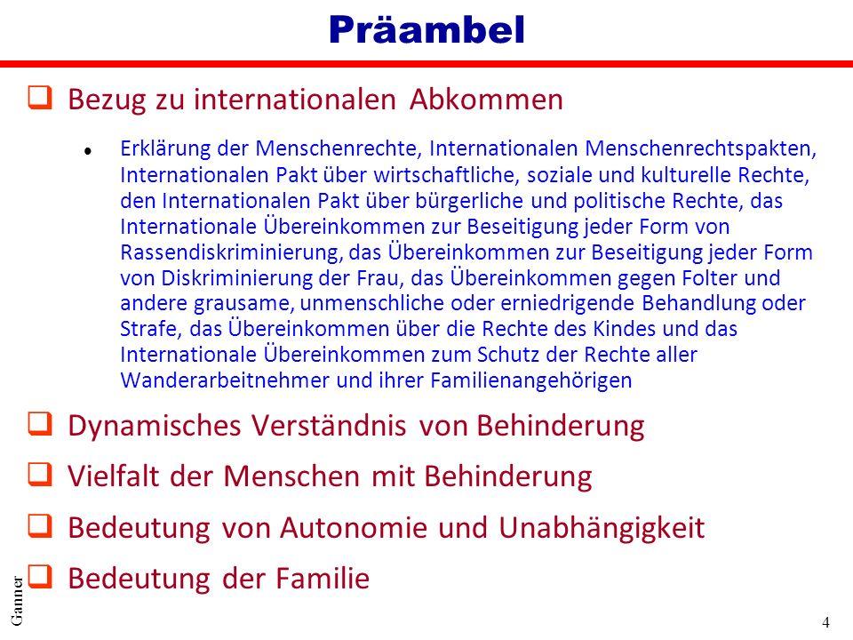 4 Ganner Präambel qBezug zu internationalen Abkommen l Erklärung der Menschenrechte, Internationalen Menschenrechtspakten, Internationalen Pakt über w