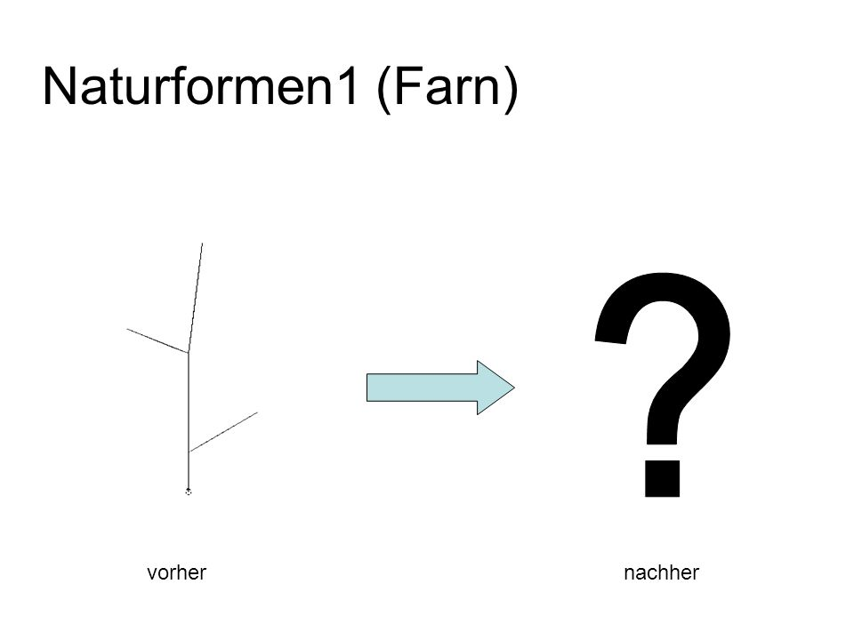 Naturformen1 (Farn) vorhernachher