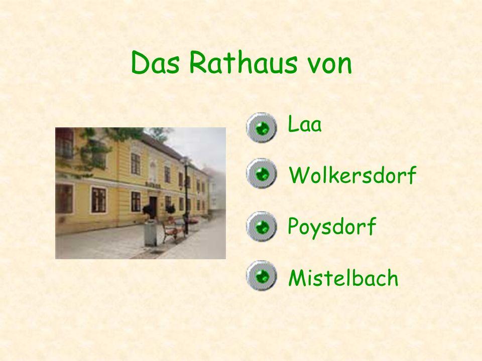 Das Rathaus von Laa Wolkersdorf Poysdorf Mistelbach