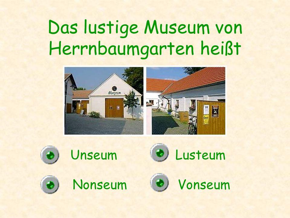 Das lustige Museum von Herrnbaumgarten heißt Unseum NonseumVonseum Lusteum