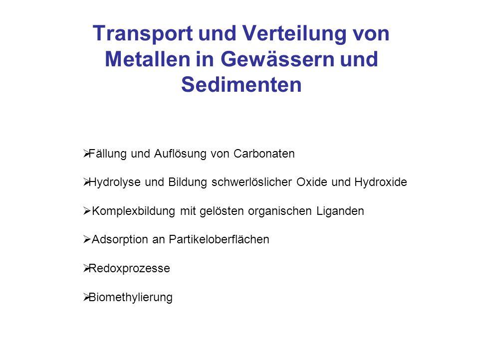 Transport und Verteilung von Metallen in Gewässern und Sedimenten Fällung und Auflösung von Carbonaten Hydrolyse und Bildung schwerlöslicher Oxide und