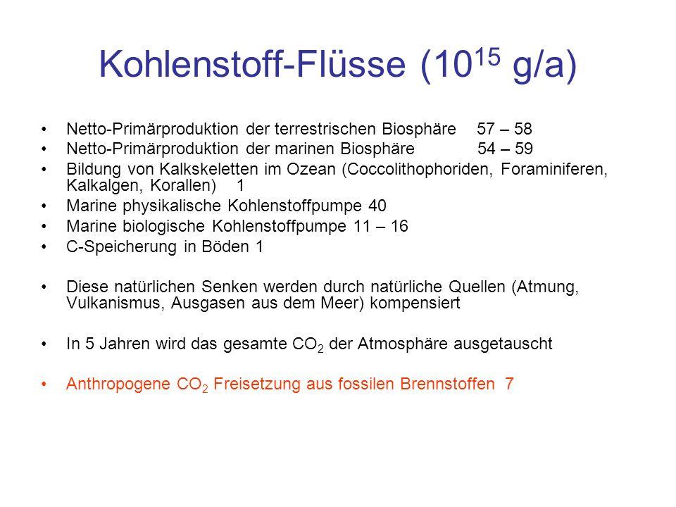 Kohlenstoff-Flüsse (10 15 g/a) Netto-Primärproduktion der terrestrischen Biosphäre 57 – 58 Netto-Primärproduktion der marinen Biosphäre 54 – 59 Bildun
