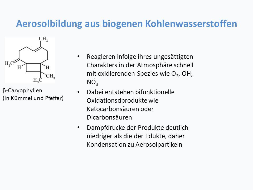 Aerosolbildung aus biogenen Kohlenwasserstoffen Reagieren infolge ihres ungesättigten Charakters in der Atmosphäre schnell mit oxidierenden Spezies wie O 3, OH, NO 3 Dabei entstehen bifunktionelle Oxidationsdprodukte wie Ketocarbonsäuren oder Dicarbonsäuren Dampfdrucke der Produkte deutlich niedriger als die der Edukte, daher Kondensation zu Aerosolpartikeln β-Caryophyllen (in Kümmel und Pfeffer)