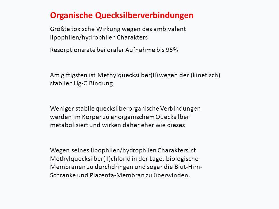 Organische Quecksilberverbindungen Größte toxische Wirkung wegen des ambivalent lipophilen/hydrophilen Charakters Resorptionsrate bei oraler Aufnahme bis 95% Am giftigsten ist Methylquecksilber(II) wegen der (kinetisch) stabilen Hg-C Bindung Weniger stabile quecksilberorganische Verbindungen werden im Körper zu anorganischem Quecksilber metabolisiert und wirken daher eher wie dieses Wegen seines lipophilen/hydrophilen Charakters ist Methylquecksilber(II)chlorid in der Lage, biologische Membranen zu durchdringen und sogar die Blut-Hirn- Schranke und Plazenta-Membran zu überwinden.