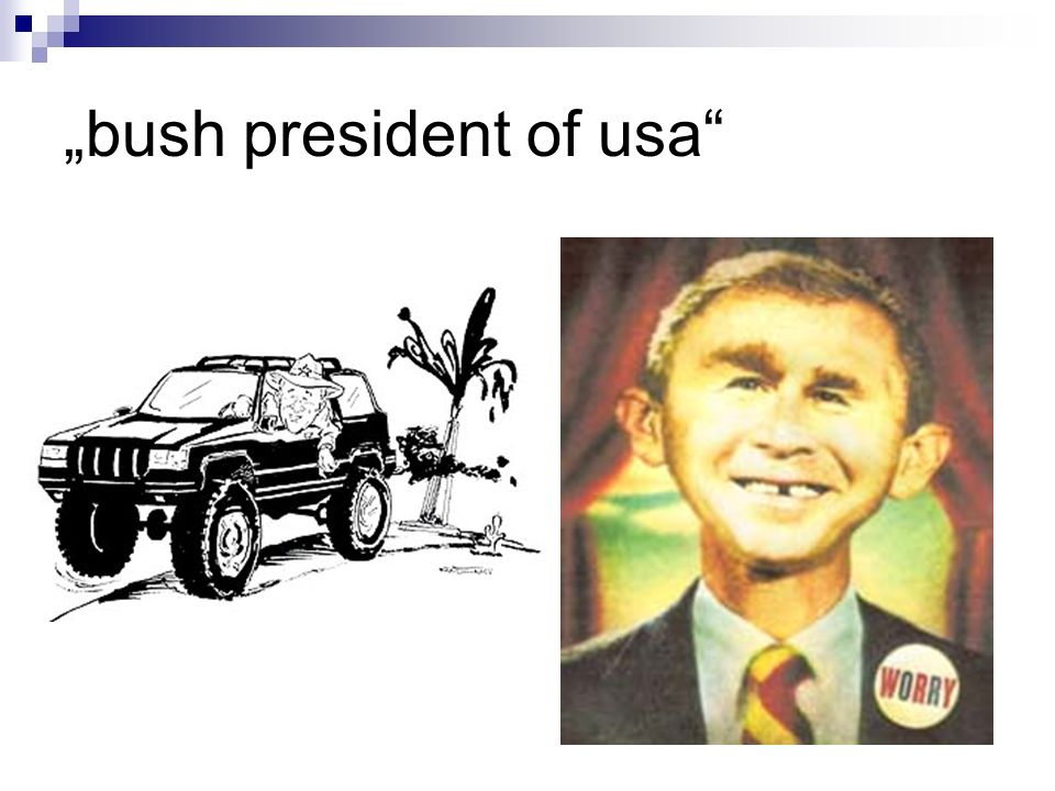 bush president of usa