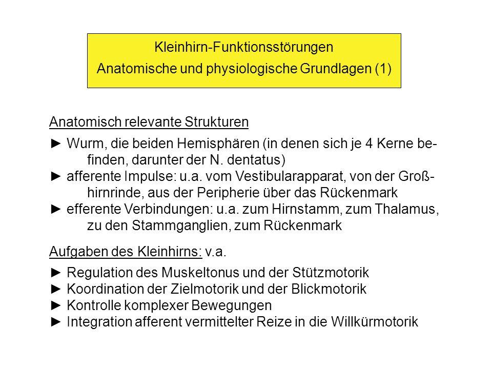 Kleinhirn-Funktionsstörungen Anatomische und physiologische Grundlagen (1) Anatomisch relevante Strukturen Wurm, die beiden Hemisphären (in denen sich