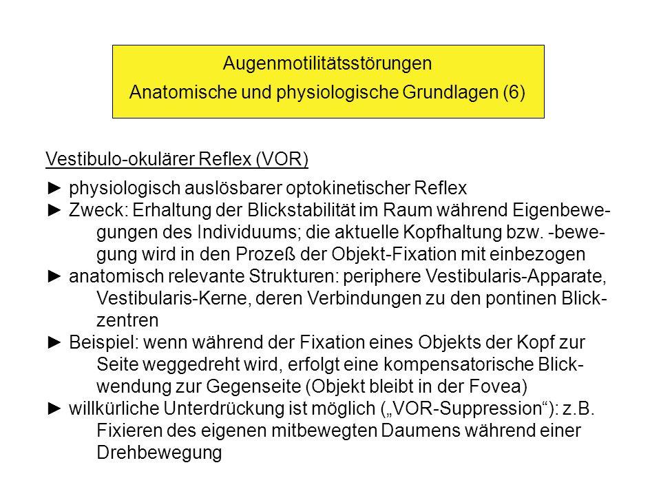 Augenmotilitätsstörungen Anatomische und physiologische Grundlagen (6) Vestibulo-okulärer Reflex (VOR) physiologisch auslösbarer optokinetischer Refle