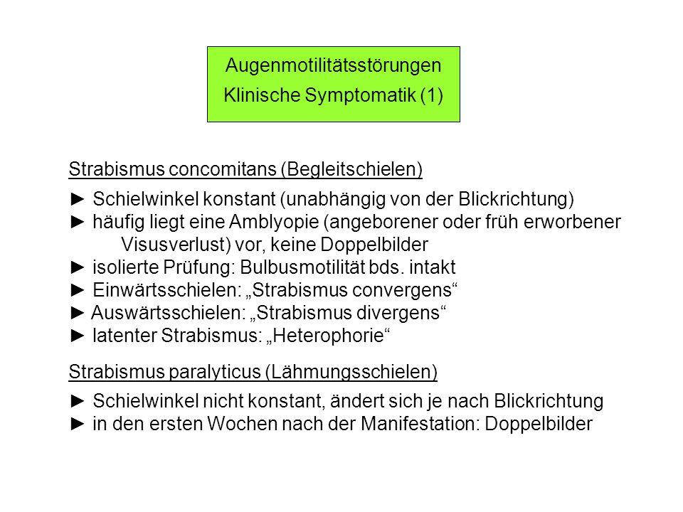 Augenmotilitätsstörungen Klinische Symptomatik (1) Strabismus concomitans (Begleitschielen) Schielwinkel konstant (unabhängig von der Blickrichtung) häufig liegt eine Amblyopie (angeborener oder früh erworbener Visusverlust) vor, keine Doppelbilder isolierte Prüfung: Bulbusmotilität bds.