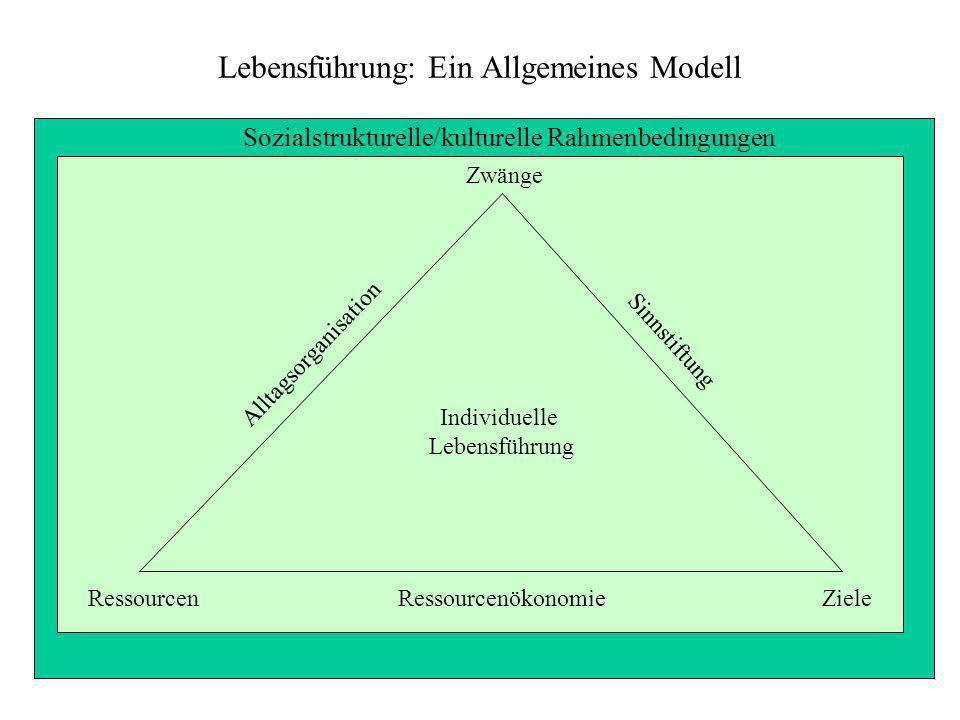 Lebensführung: Ein Allgemeines Modell Zwänge Alltagsorganisation Sinnstiftung Individuelle Lebensführung ZieleRessourcenRessourcenökonomie Sozialstruk