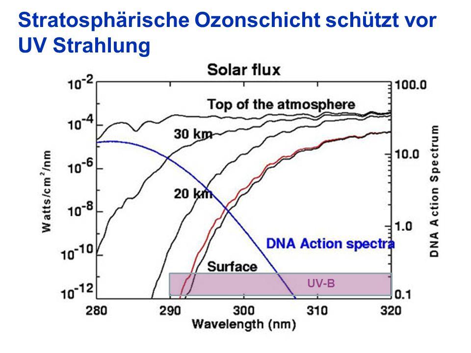 Stratosphärische Ozonschicht schützt vor UV Strahlung UV-B