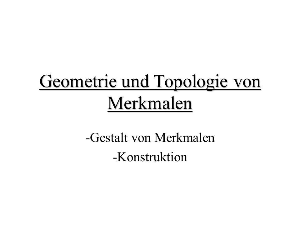 Geometrie und Topologie von Merkmalen -Gestalt von Merkmalen -Konstruktion