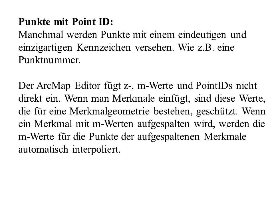 Punkte mit Point ID: Manchmal werden Punkte mit einem eindeutigen und einzigartigen Kennzeichen versehen. Wie z.B. eine Punktnummer. Der ArcMap Editor