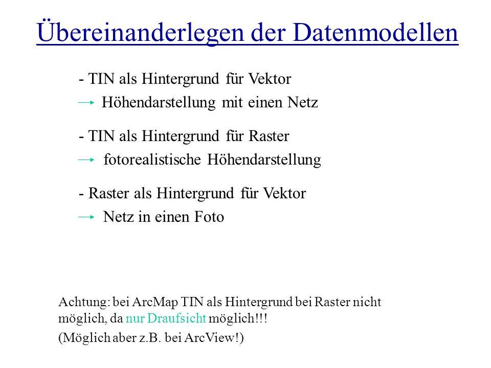 Übereinanderlegen der Datenmodellen - Raster als Hintergrund für Vektor Netz in einen Foto Achtung: bei ArcMap TIN als Hintergrund bei Raster nicht mö