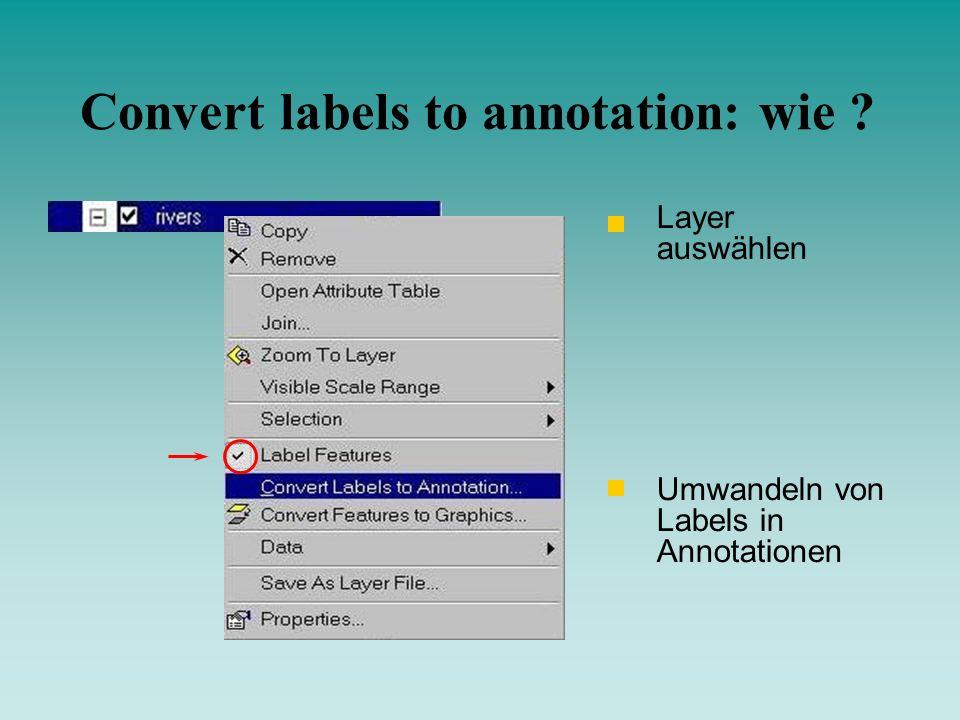 Umwandeln von Labels in Annotationen Layer auswählen