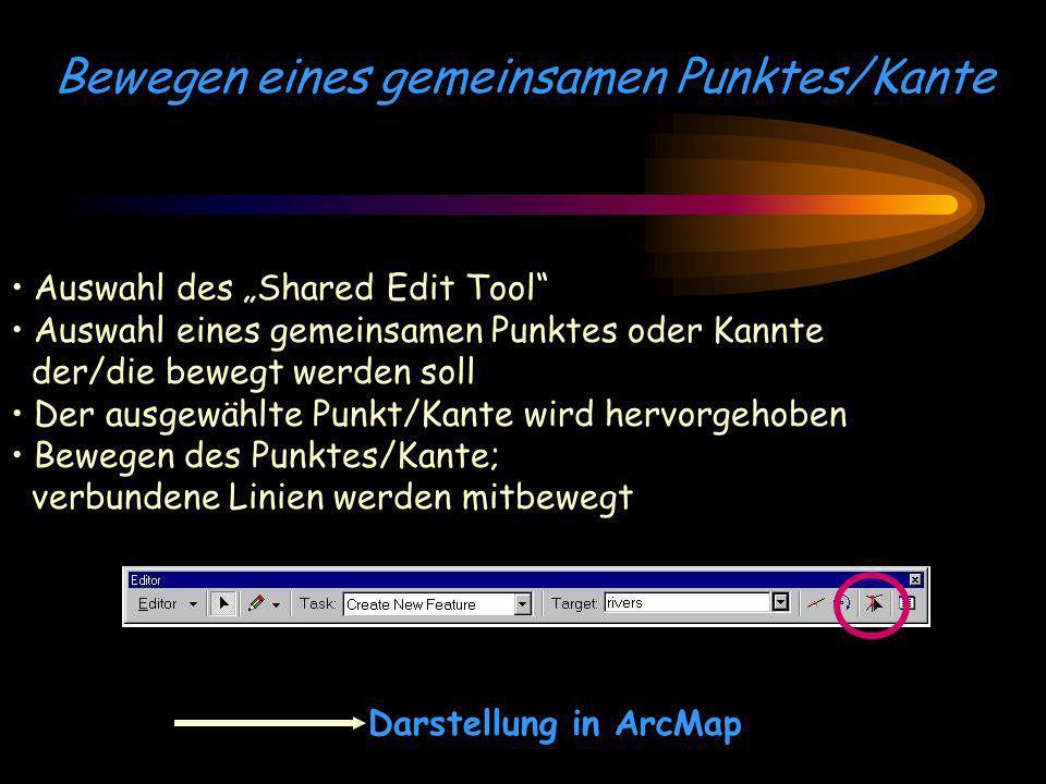 Bewegen eines gemeinsamen Punktes/Kante Auswahl des Shared Edit Tool Auswahl eines gemeinsamen Punktes oder Kannte der/die bewegt werden soll Der ausg