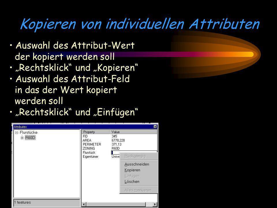 Kopieren von individuellen Attributen Auswahl des Attribut-Wert der kopiert werden soll Rechtsklick und Kopieren Auswahl des Attribut-Feld in das der