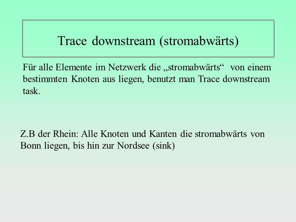 Trace downstream (stromabwärts) Für alle Elemente im Netzwerk die stromabwärts von einem bestimmten Knoten aus liegen, benutzt man Trace downstream task.