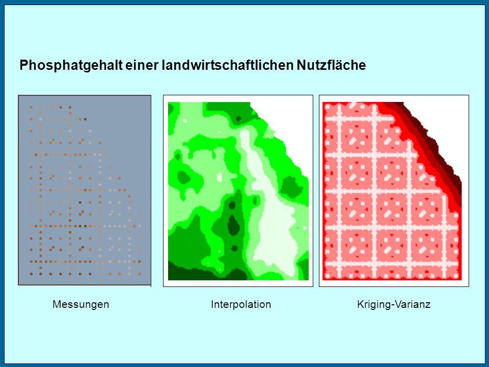 MessungenInterpolationKriging-Varianz Phosphatgehalt einer landwirtschaftlichen Nutzfläche