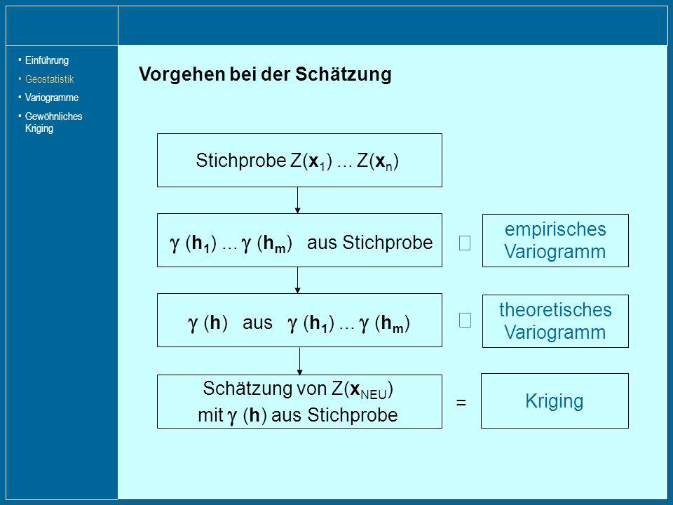Empirisches Variogramm Schätzung von (h) auf Grundlage der Stichprobe je vorkommendem Abstand Schätzung der Semivarianz mit Vorgehen: Bestimmung der Abstände aller vorkommenden Punktpaare Einführung Geostatistik Variogramme Gewöhnliches Kriging