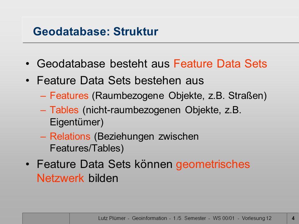 Lutz Plümer - Geoinformation - 1./5. Semester - WS 00/01 - Vorlesung 124 Geodatabase: Struktur Geodatabase besteht aus Feature Data Sets Feature Data