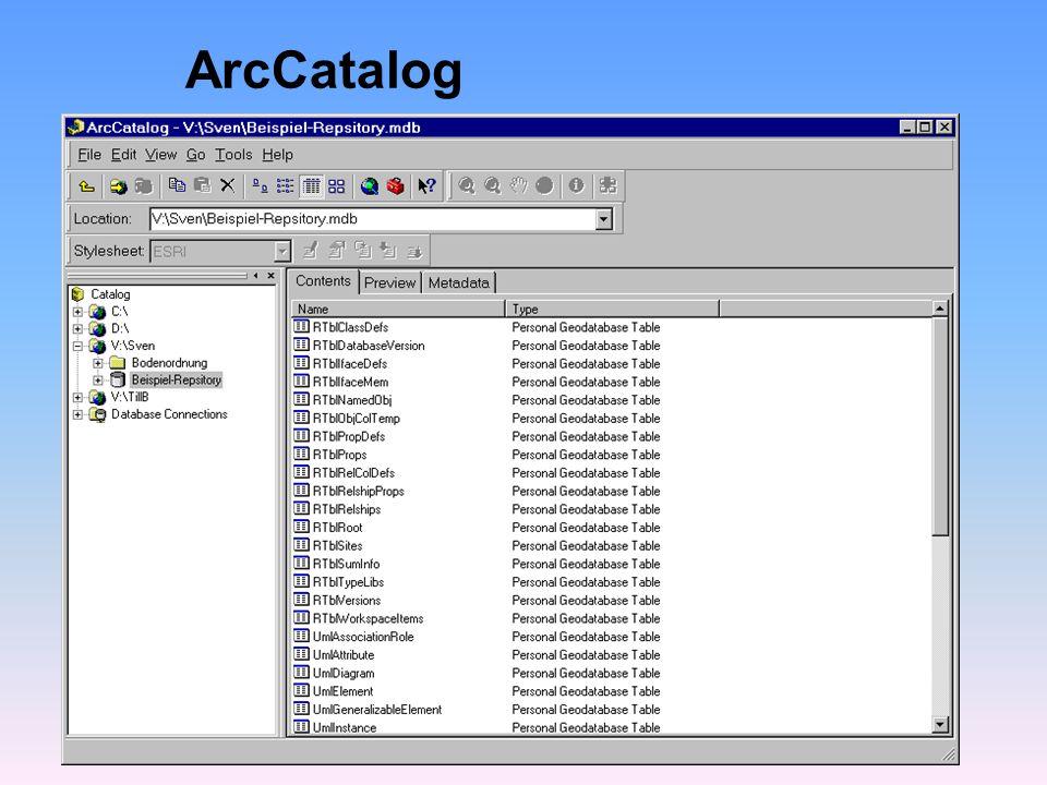 Erstellen von Datenpaketen lWie sollen Daten in ArcInfo repräsentiert werden .