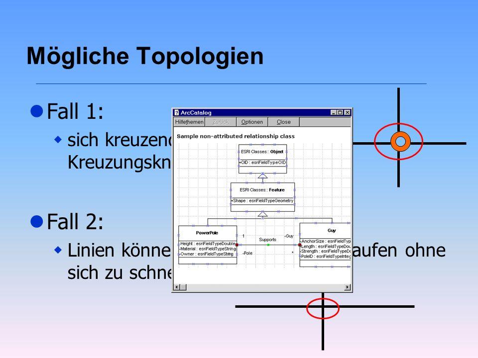 Mögliche Topologien lFall 1: wsich kreuzende Linien haben Kreuzungsknoten lFall 2: wLinien können untereinander verlaufen ohne sich zu schneiden