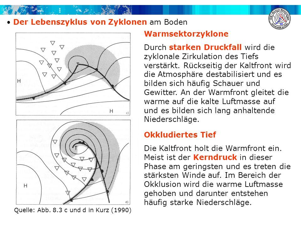Der Lebenszyklus von Zyklonen am Boden Warmsektorzyklone Durch starken Druckfall wird die zyklonale Zirkulation des Tiefs verstärkt. Rückseitig der Ka