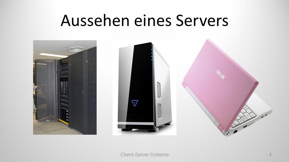 Jeder Rechner kann ein Server sein.