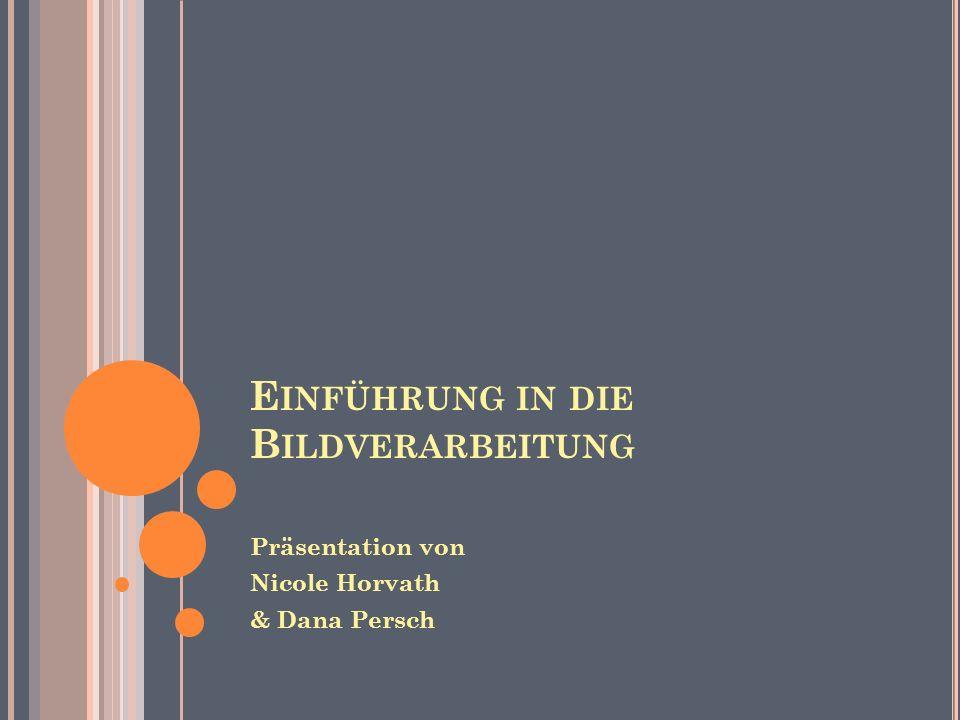E INFÜHRUNG IN DIE B ILDVERARBEITUNG Präsentation von Nicole Horvath & Dana Persch