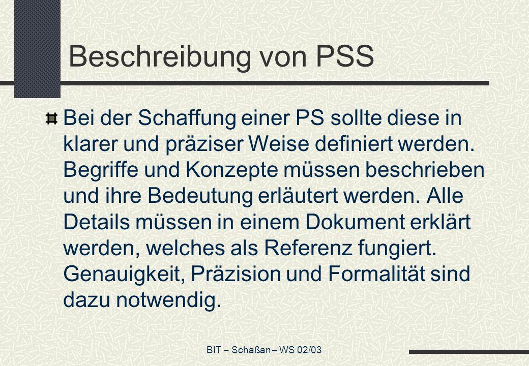 BIT – Schaßan – WS 02/03 Beschreibung von PSS Bei der Schaffung einer PS sollte diese in klarer und präziser Weise definiert werden. Begriffe und Konz