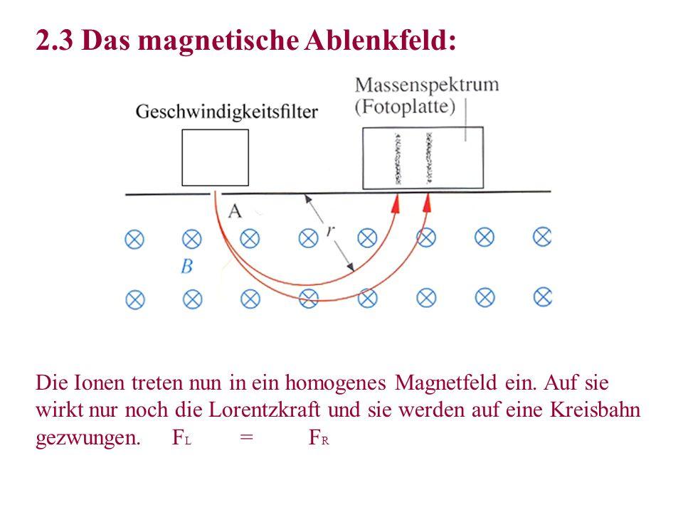 Die Ionen treten nun in ein homogenes Magnetfeld ein. Auf sie wirkt nur noch die Lorentzkraft und sie werden auf eine Kreisbahn gezwungen. F L =F R 2.