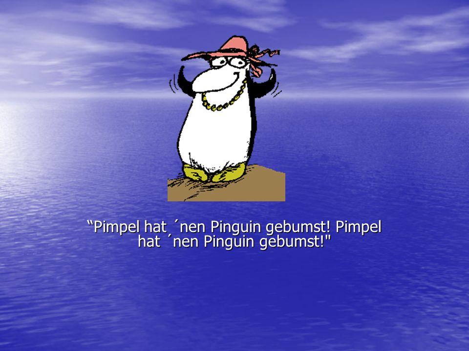 Pimpel hat ´nen Pinguin gebumst! Pimpel hat ´nen Pinguin gebumst!