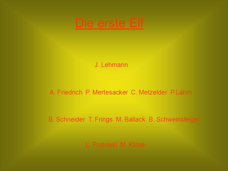 Die erste Elf J.Lehmann A. Friedrich P. Mertesacker C.