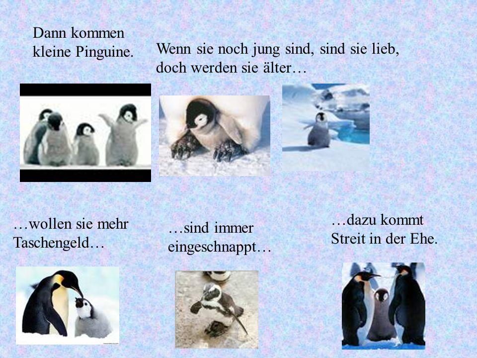 Dann kommen kleine Pinguine. Wenn sie noch jung sind, sind sie lieb, doch werden sie älter… …wollen sie mehr Taschengeld… …sind immer eingeschnappt… …