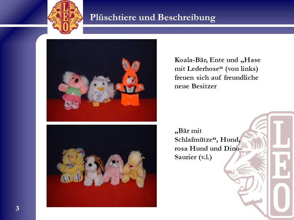 Plüschtiere und Beschreibung 3 Koala-Bär, Ente und Hase mit Lederhose (von links) freuen sich auf freundliche neue Besitzer Bär mit Schlafmütze, Hund, rosa Hund und Dino- Saurier (v.l.)