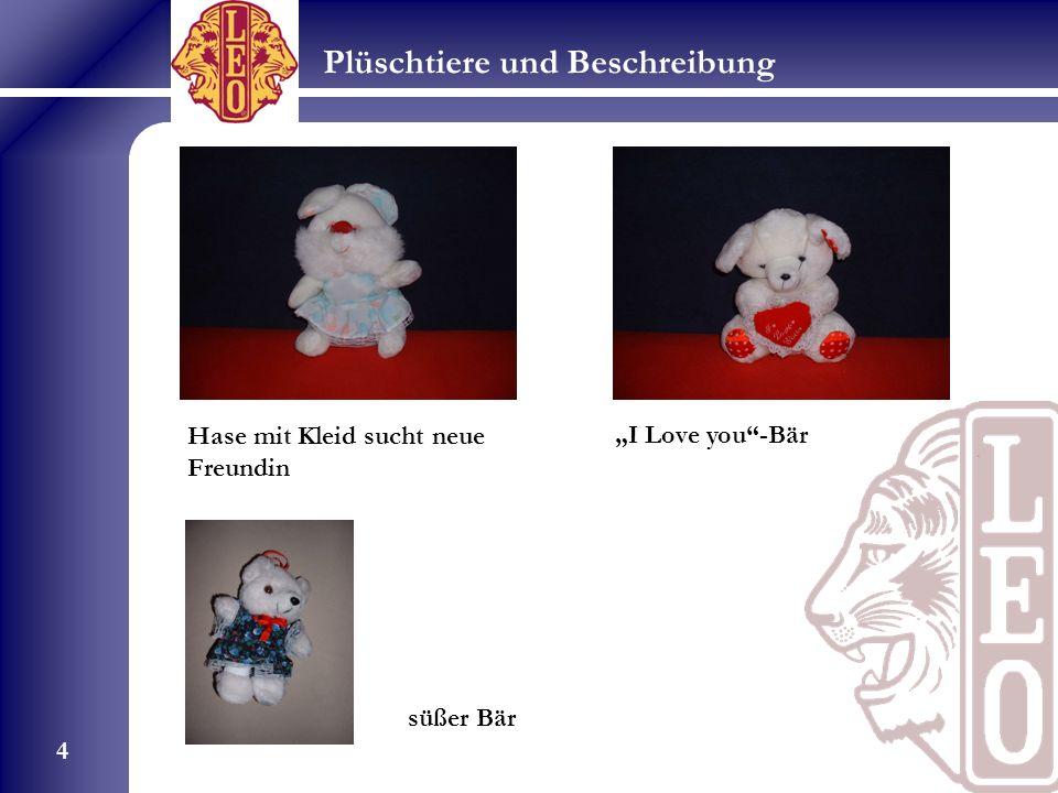 Plüschtiere und Beschreibung 4 Hase mit Kleid sucht neue Freundin I Love you-Bär süßer Bär