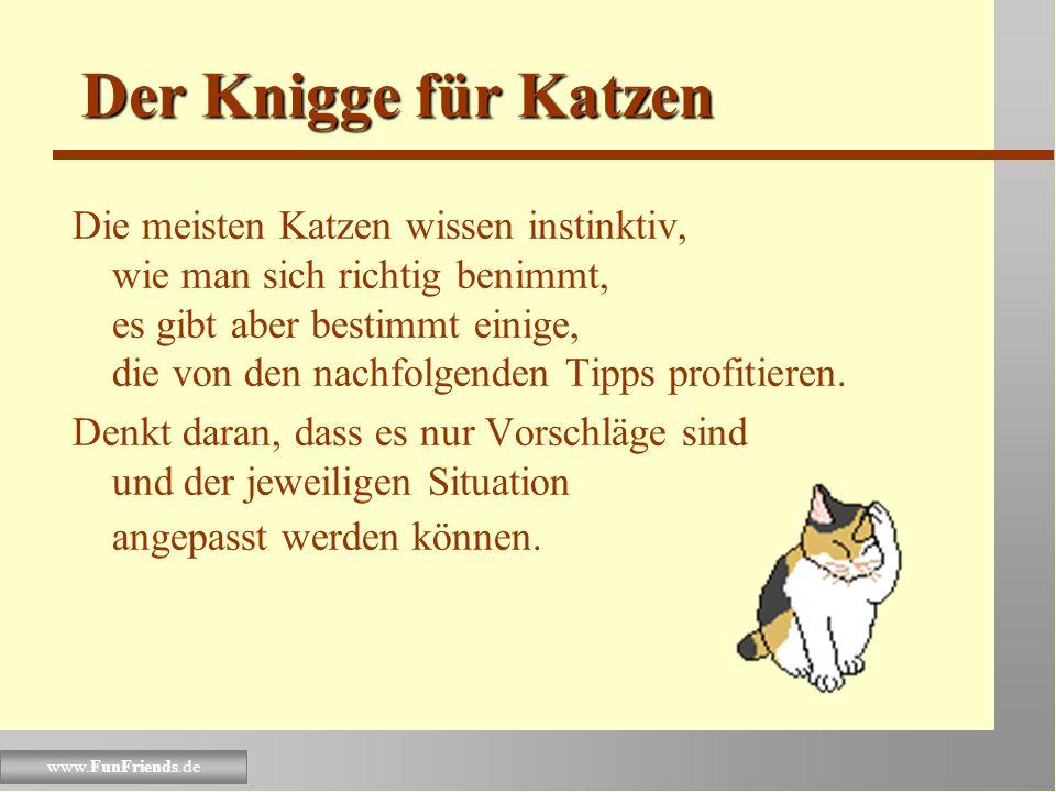 www.FunFriends.de Der Knigge für Katzen Die meisten Katzen wissen instinktiv, wie man sich richtig benimmt, es gibt aber bestimmt einige, die von den nachfolgenden Tipps profitieren.