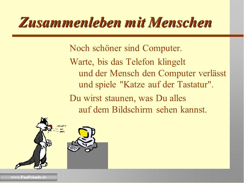 www.FunFriends.de Zusammenleben mit Menschen Auch Schreibmaschinen sollte der Mensch nicht alleine bedienen müssen. Setze Dich auf den Schoß Deines Me
