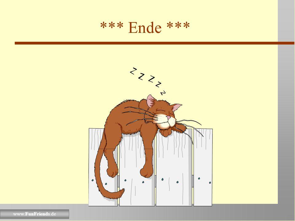 www.FunFriends.de Das waren einige Richtlinien Du kannst weiter improvisieren. Denke daran, dass eine erfolgreiche Katze immer gut ausgeruht ist; schl
